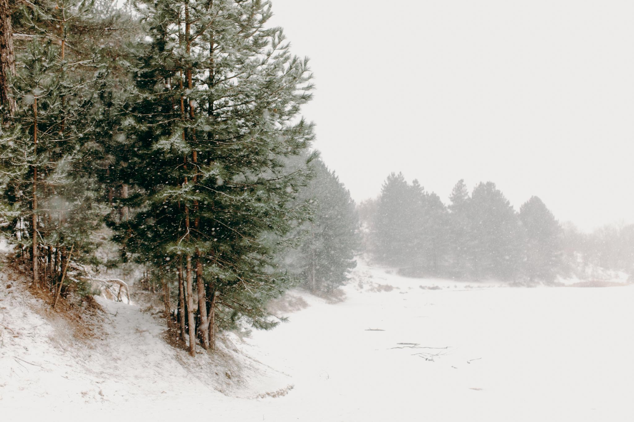 037-winter-sneeuw-oosterplas-bloemendaal.jpg
