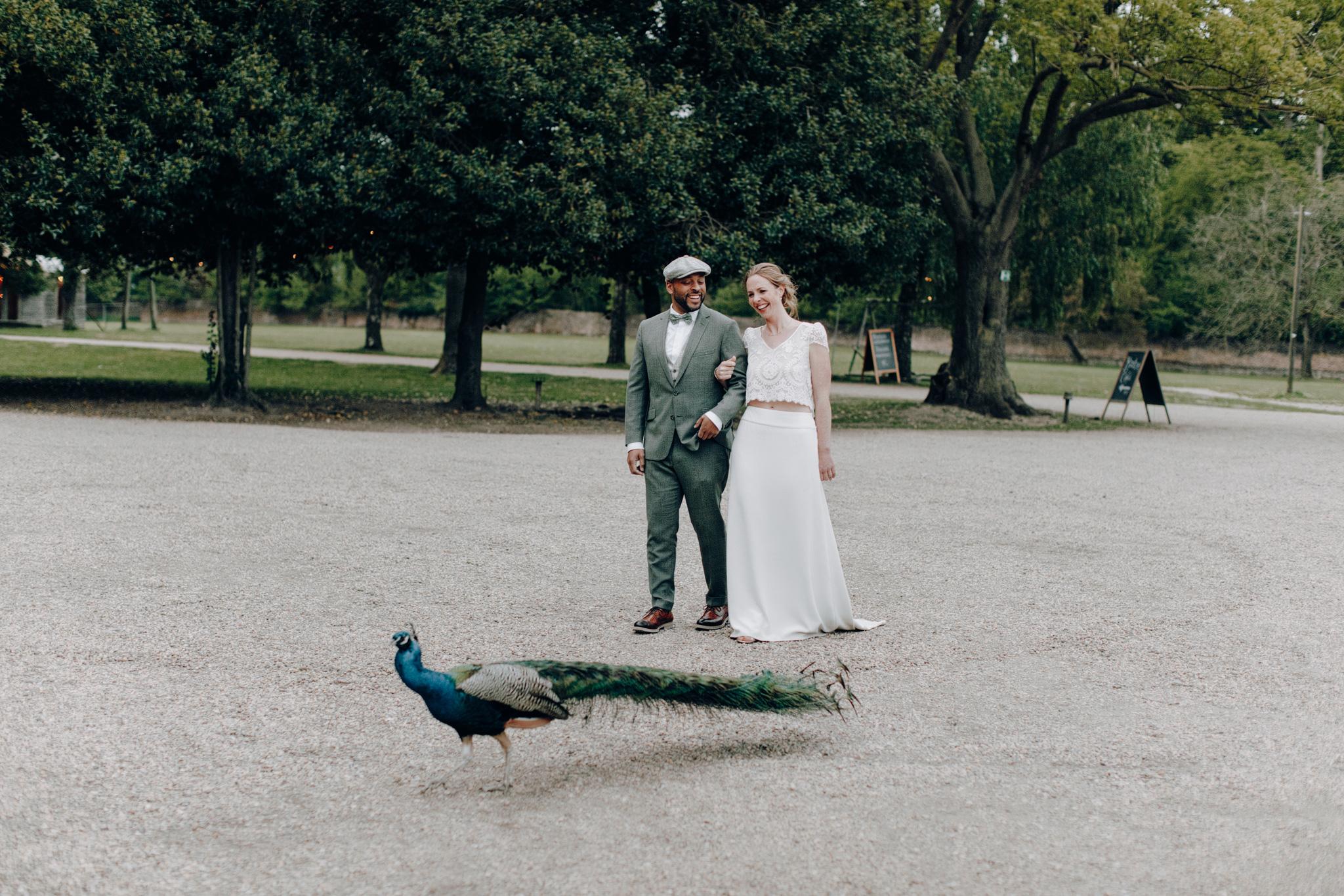 Bruid en bruidegom met pauw op terrein Kloster Graefenthal