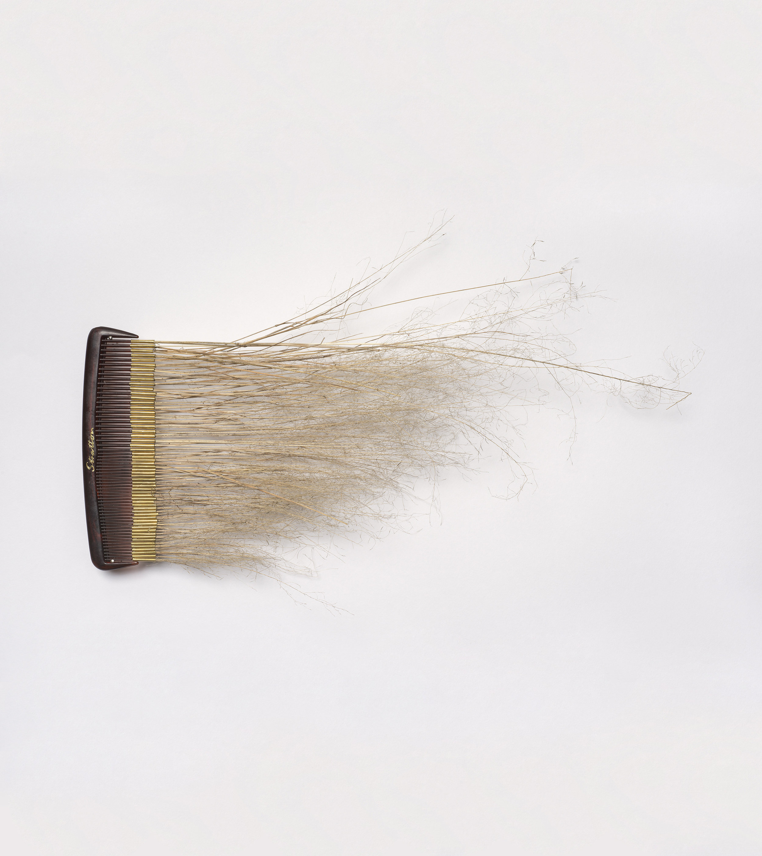 Combs of the Monaro