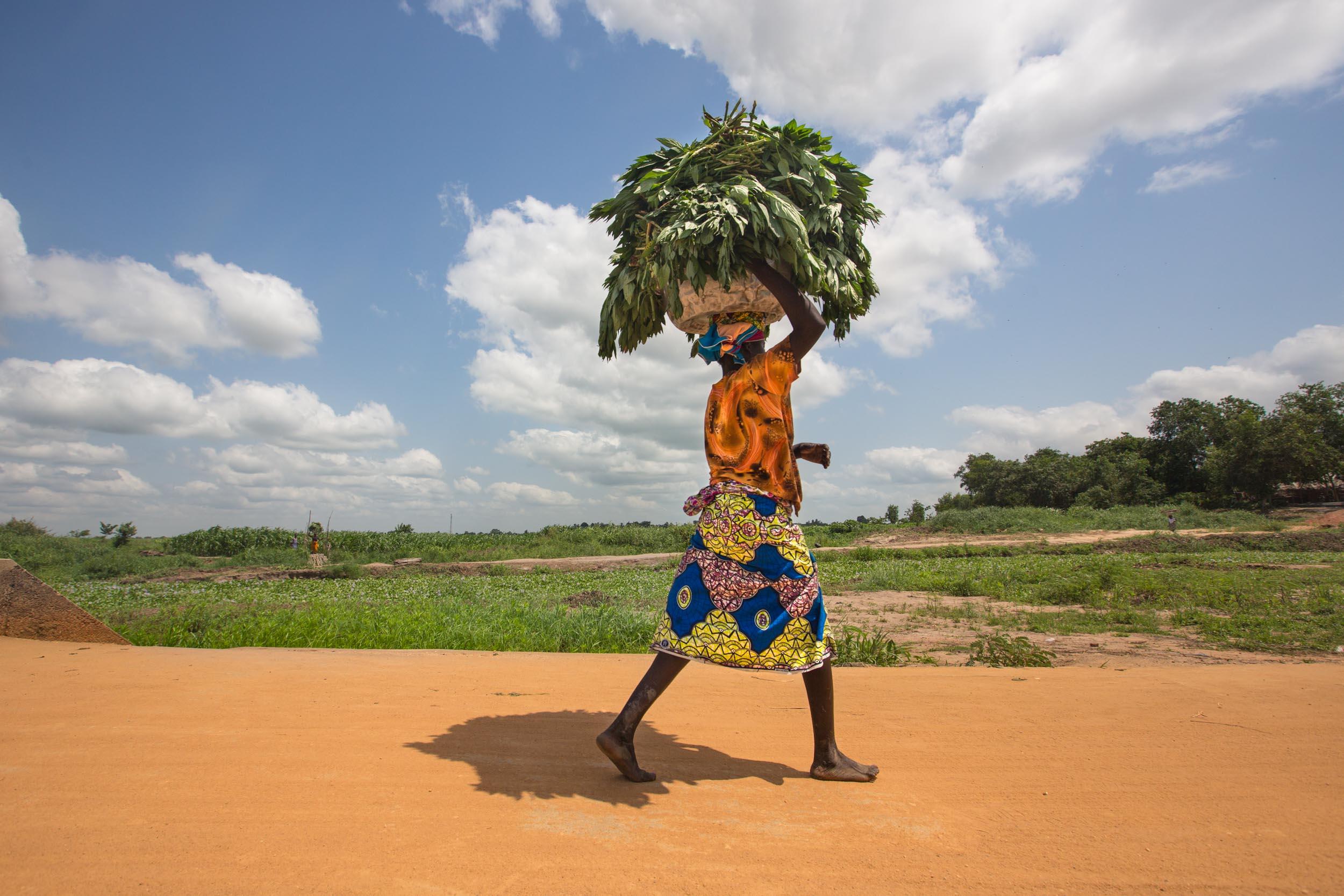 Benin-6.jpg