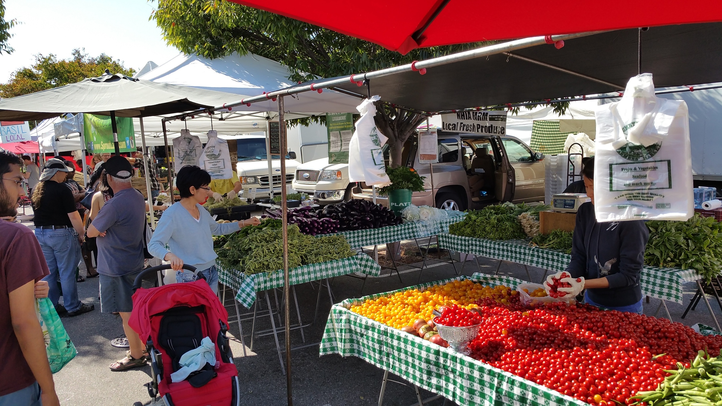 The Mountain View Farmer's Market. On Super Bowl Sunday, it will be open from 9 until noon at California and Bryant streets.