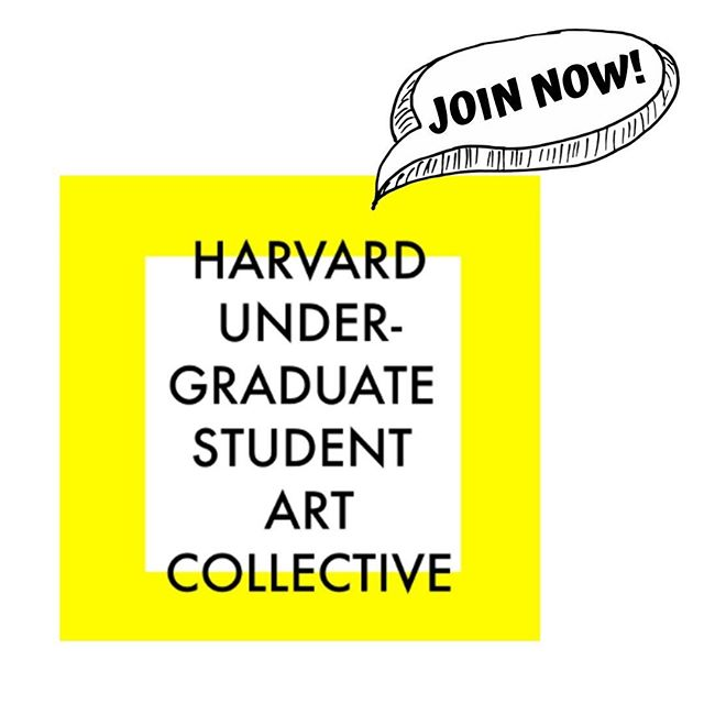Apply now to join HUSAC!!! Link to application in bio