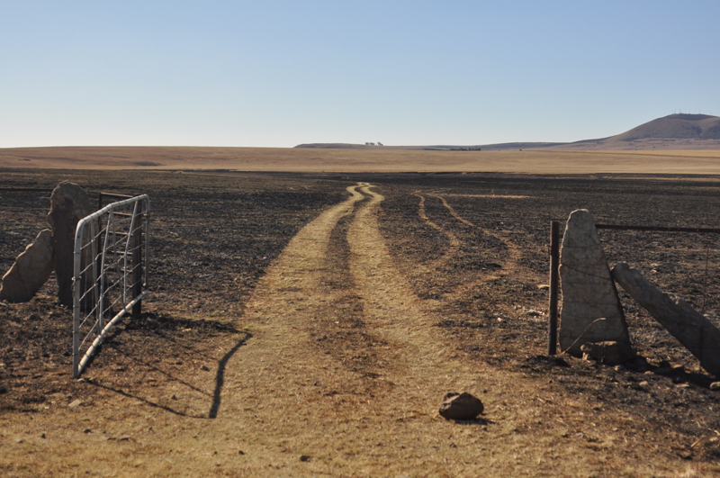 Day 14- Poetic Claim Of Territory (Free-state, South Africa)