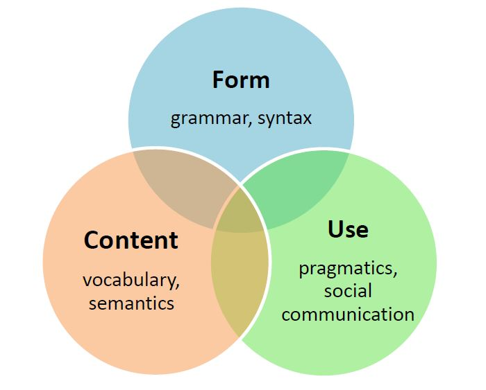 Bloom, L. and Lahey, M. (1978) Language Development and Language Disorders New York: Wiley.