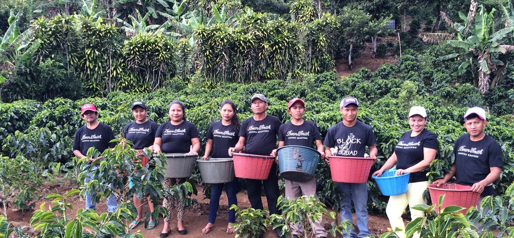 "The ""Cojedores"" or coffee pickers of Cafe' Con Amor (photo courtesy of Cafe' Con Amor)"