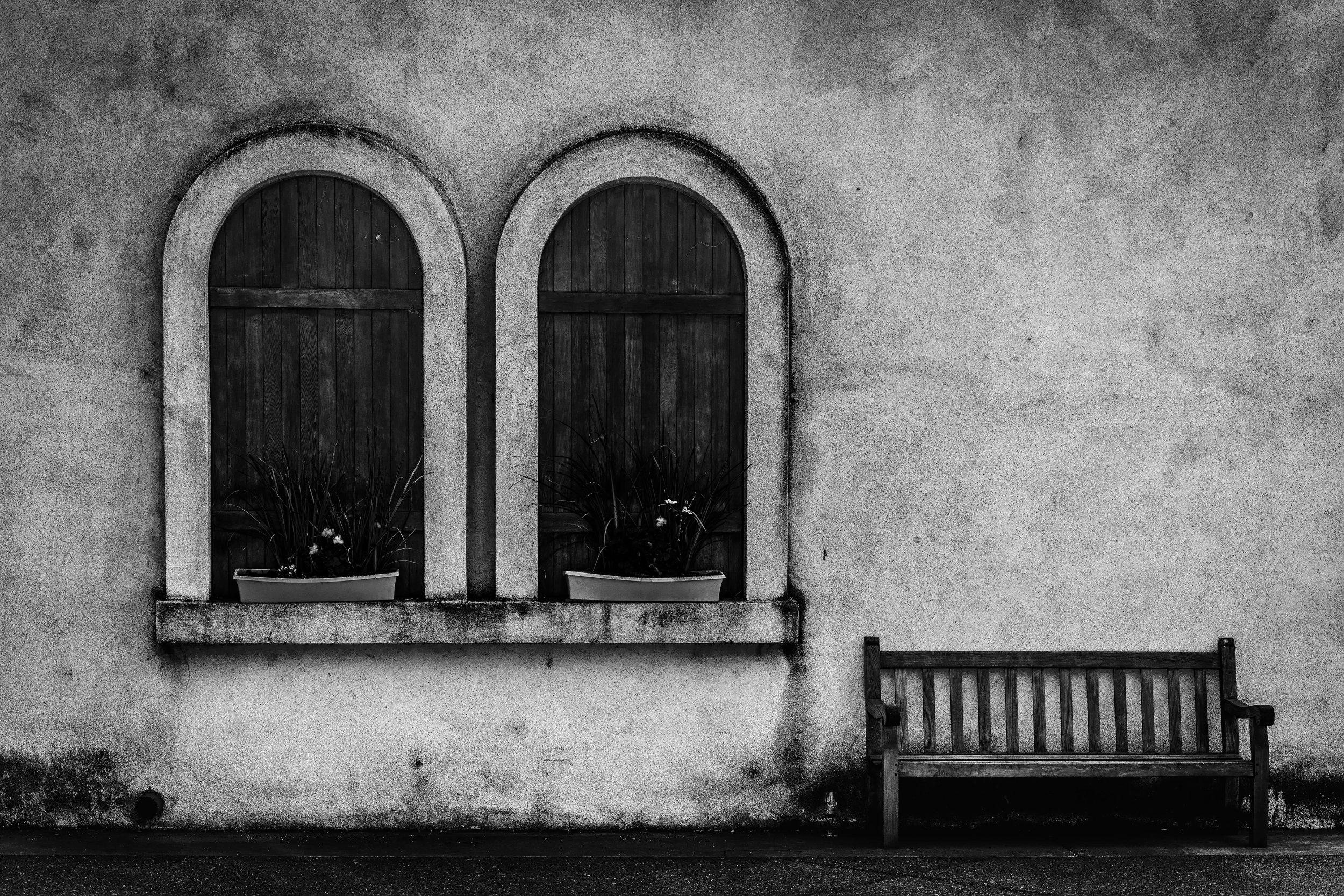 Vineyard Windows