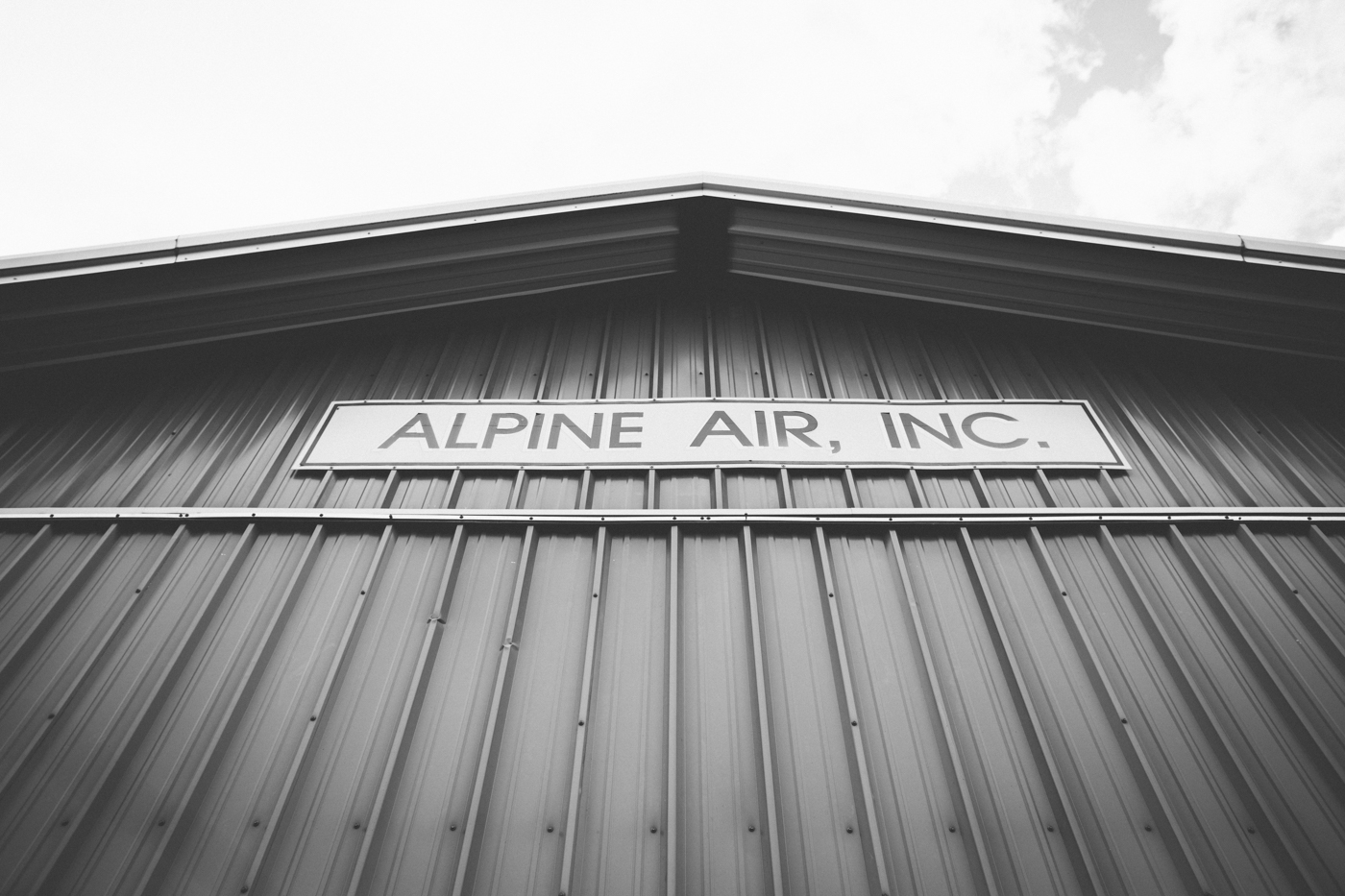 Alpine Air Alaska Wedding