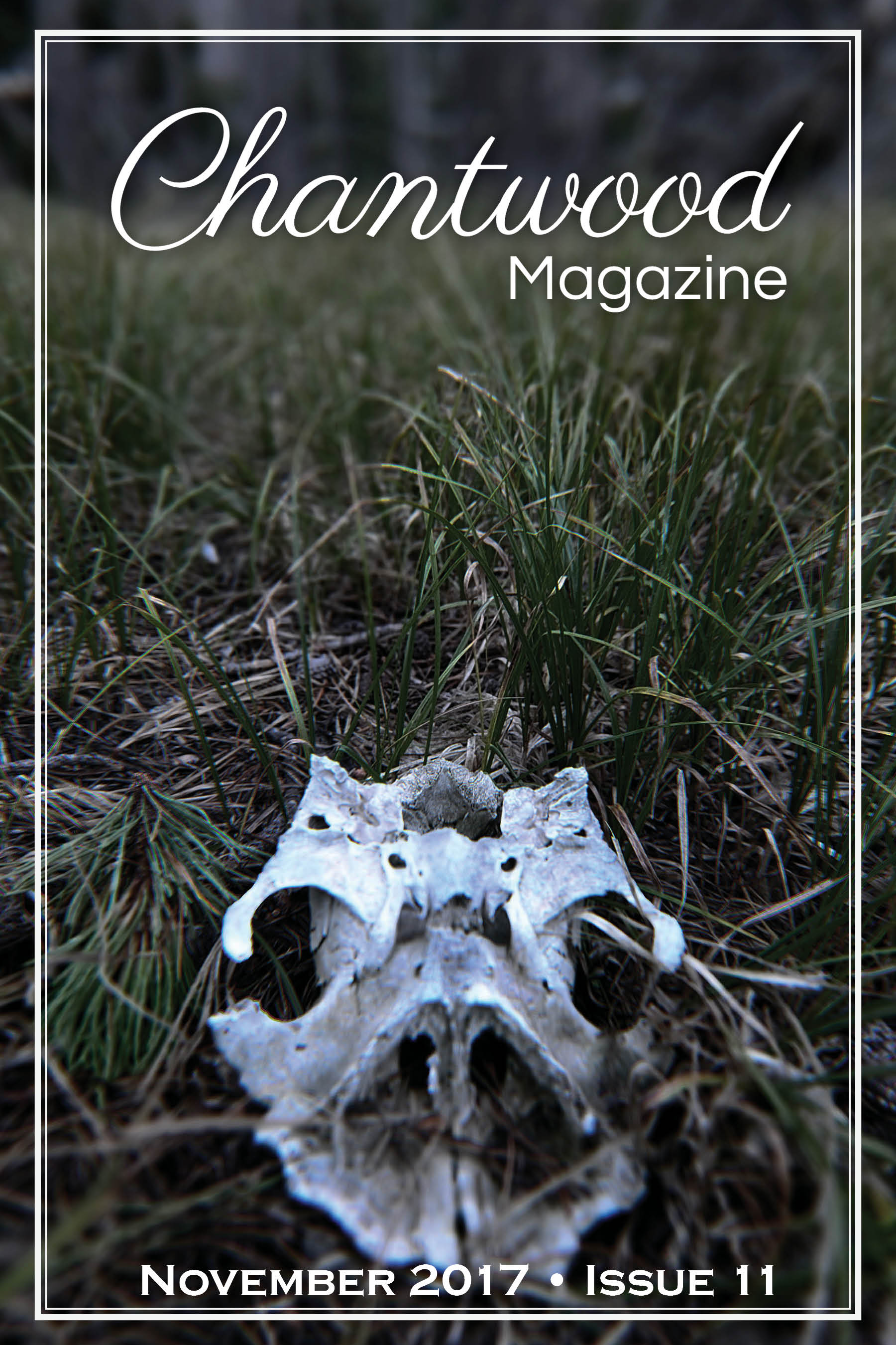 chantwood cover november 2017.jpg