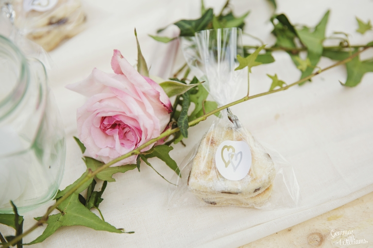 Plas-Dinam-Wedding-GemmaWilliamsPhotography152(pp_w768_h511).jpg