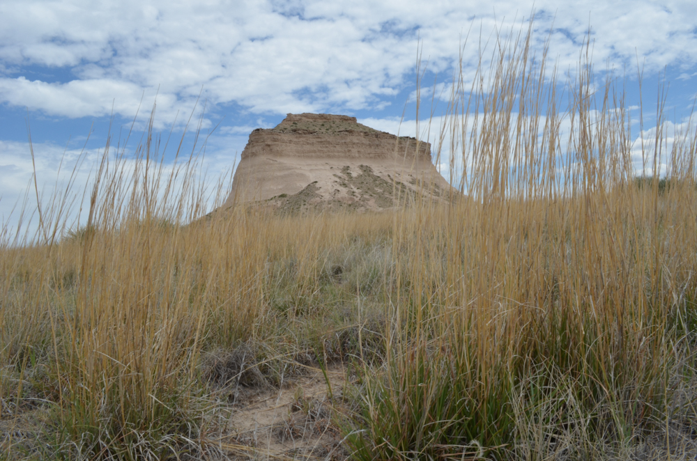 Pawnee National Grassland and Fort Collins