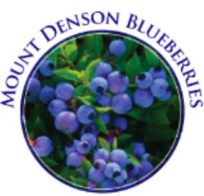 Mount Denson Blueberries