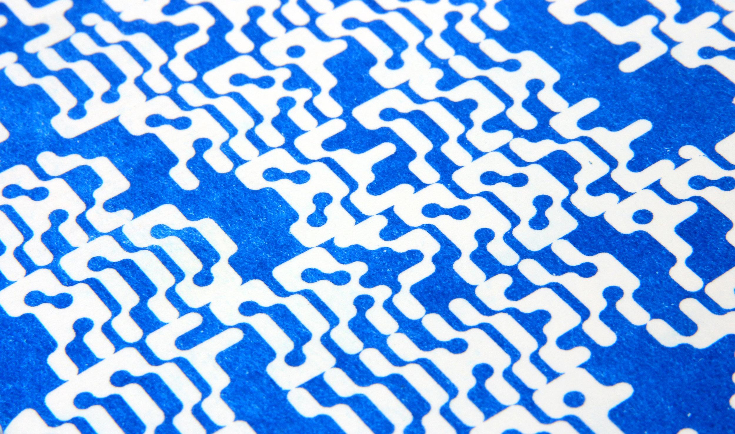 riso detail.jpg