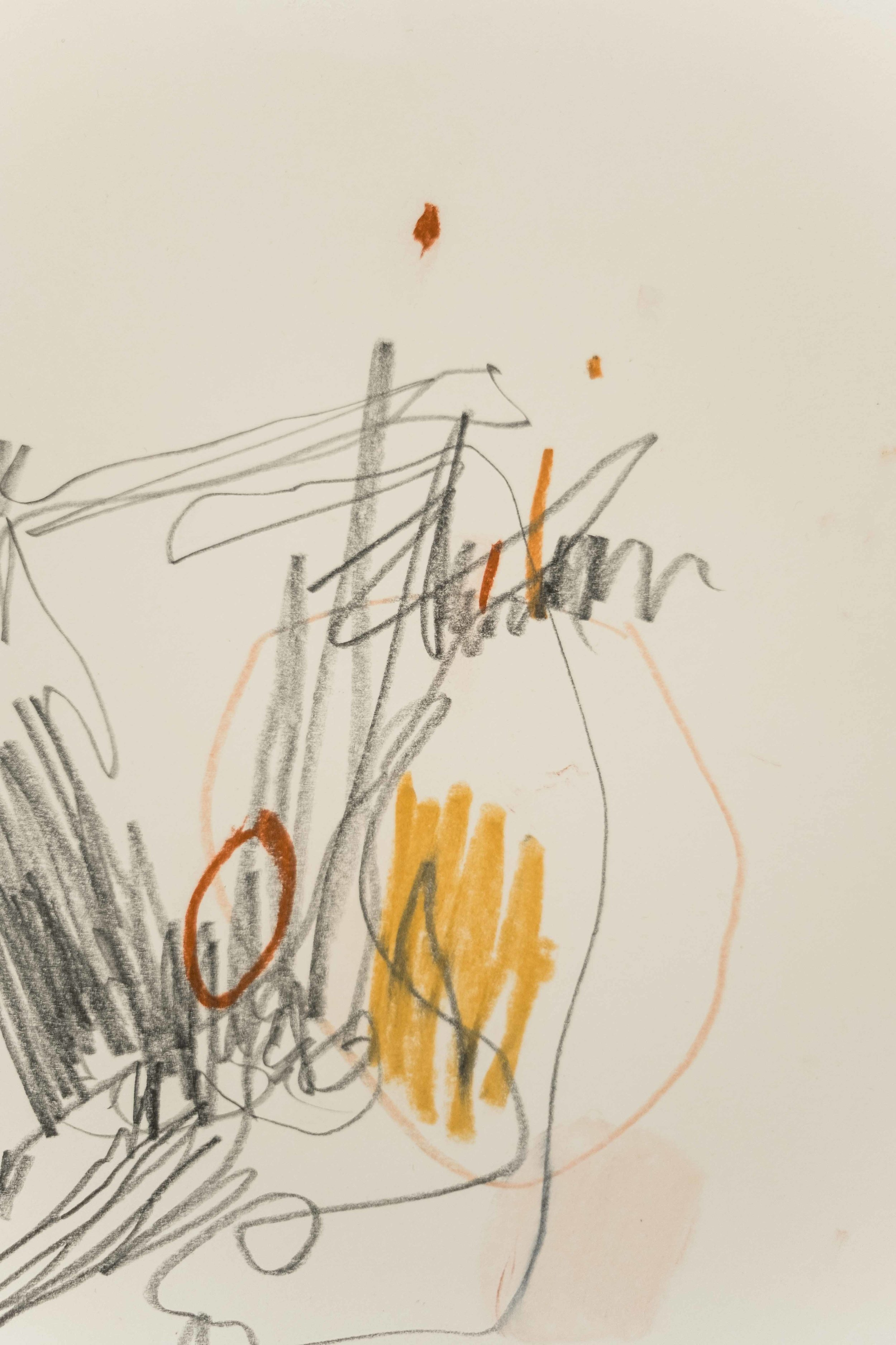 "Velma (Detail) / 8.5"" x 11"" / graphite and chalk pastel on paper"