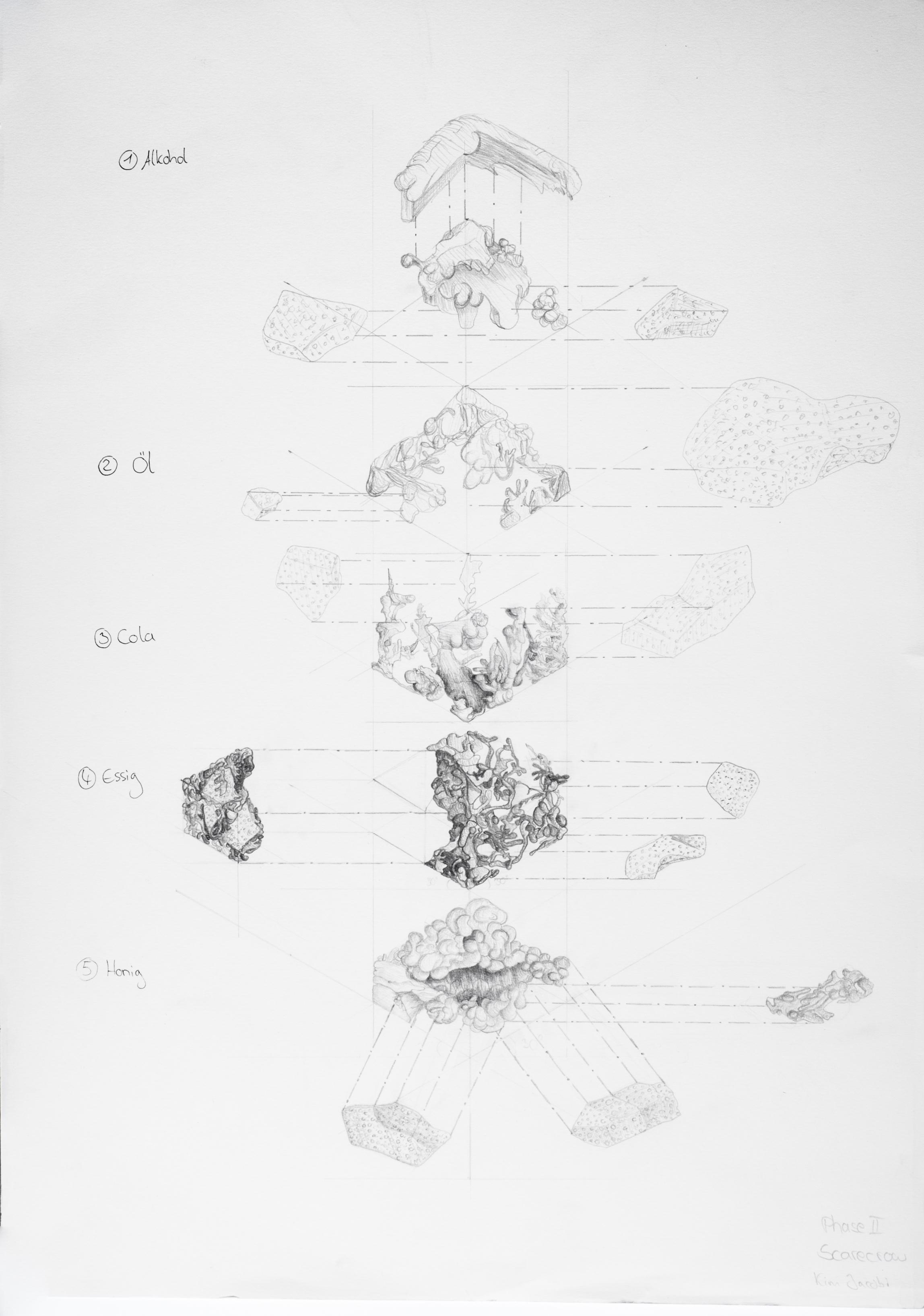 Phase 3 - Feld - Mutation - kontemplatives Experiment Autor: Kim Annik Jacobi Photo: Natalie Weinmann, 2016