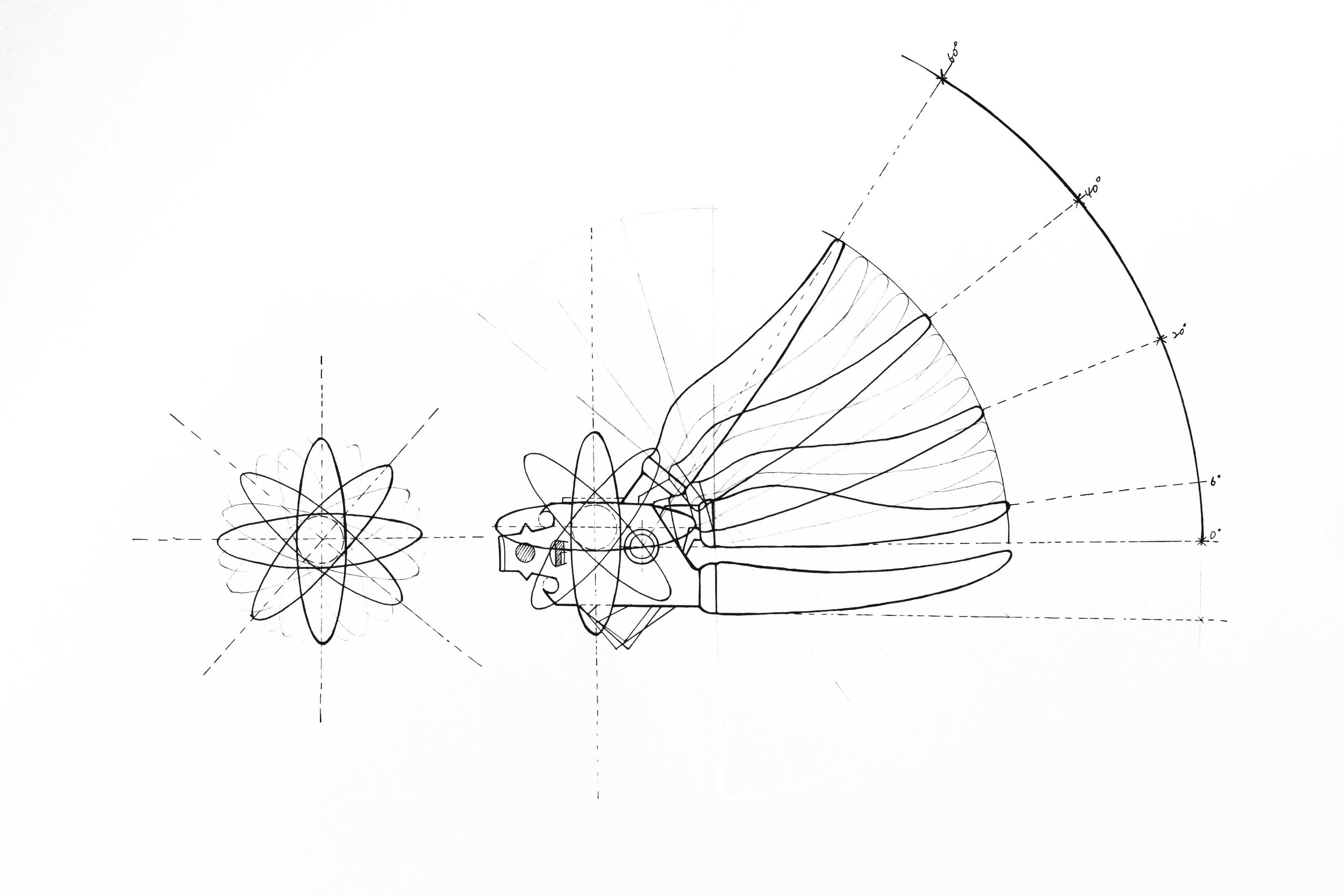 Darstellung II - Dynamik & Funktion Autor:Jingdi Shan