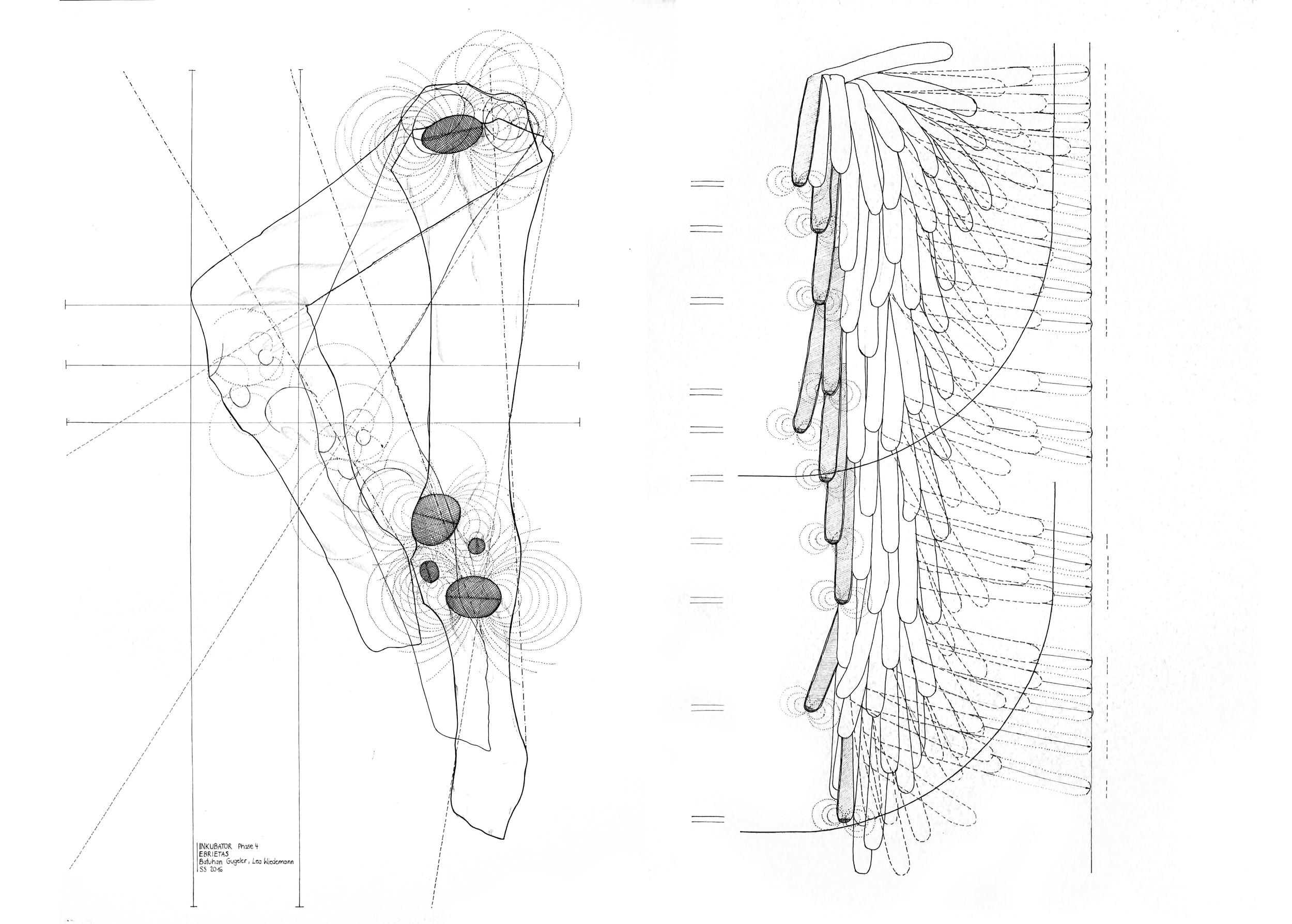 Phase 4 - Hybride - konfrontatives Experiment Autoren:Batuhan Gugeler &Lea Wiedemann