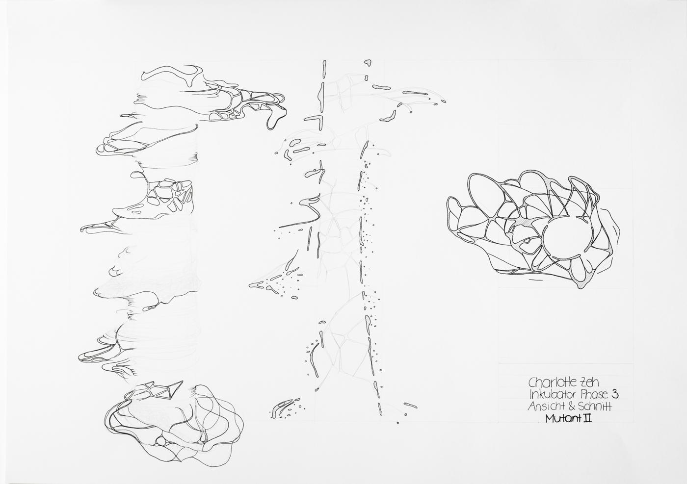 PHASE3_drawings_web_48.jpg