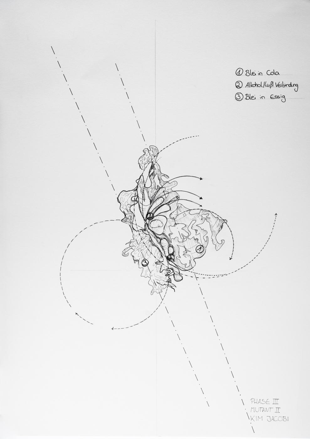 PHASE3_drawings_web_60.jpg