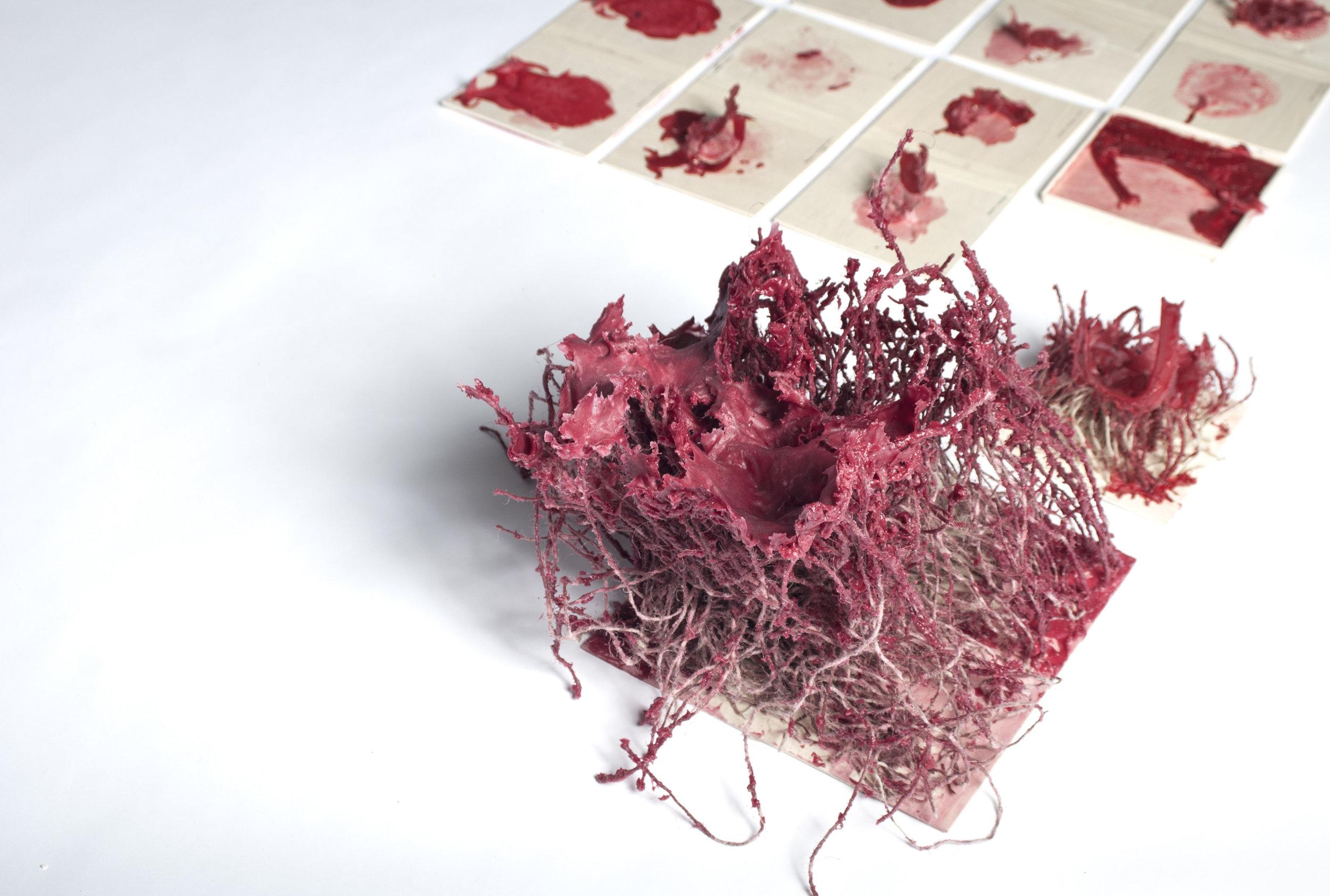 Phase 1 - Materialität - Intuitives Spiel  Autor: Nayeon Kim Photo: Johanna Schneider, Yannik Kaiser, 2017