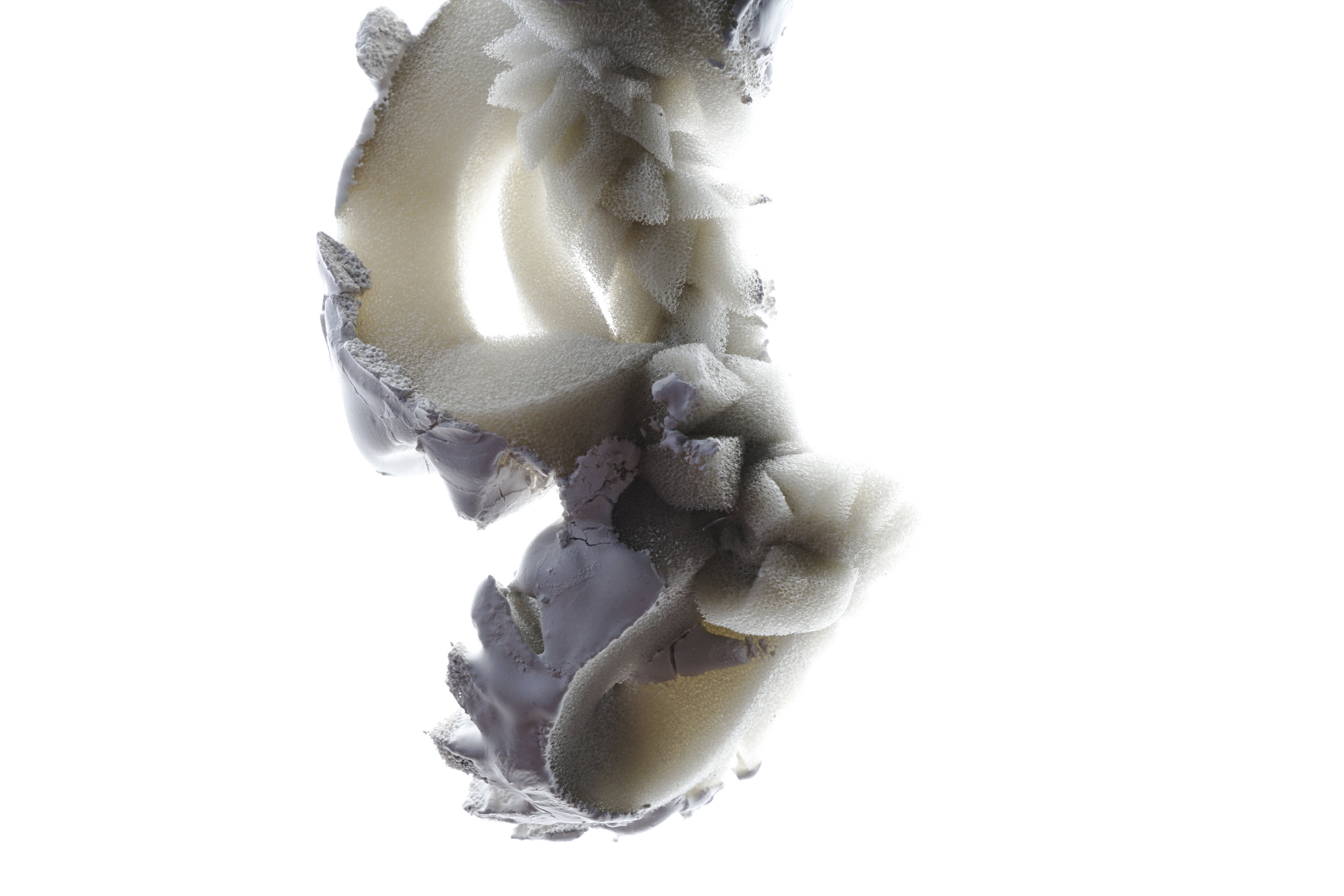 Phase 3 - Feld - Mutation: - kontemplatives Experiment  Autor: Anna Kempf Photo: Johanna Schneider, Ines Viola Schlecker 2018