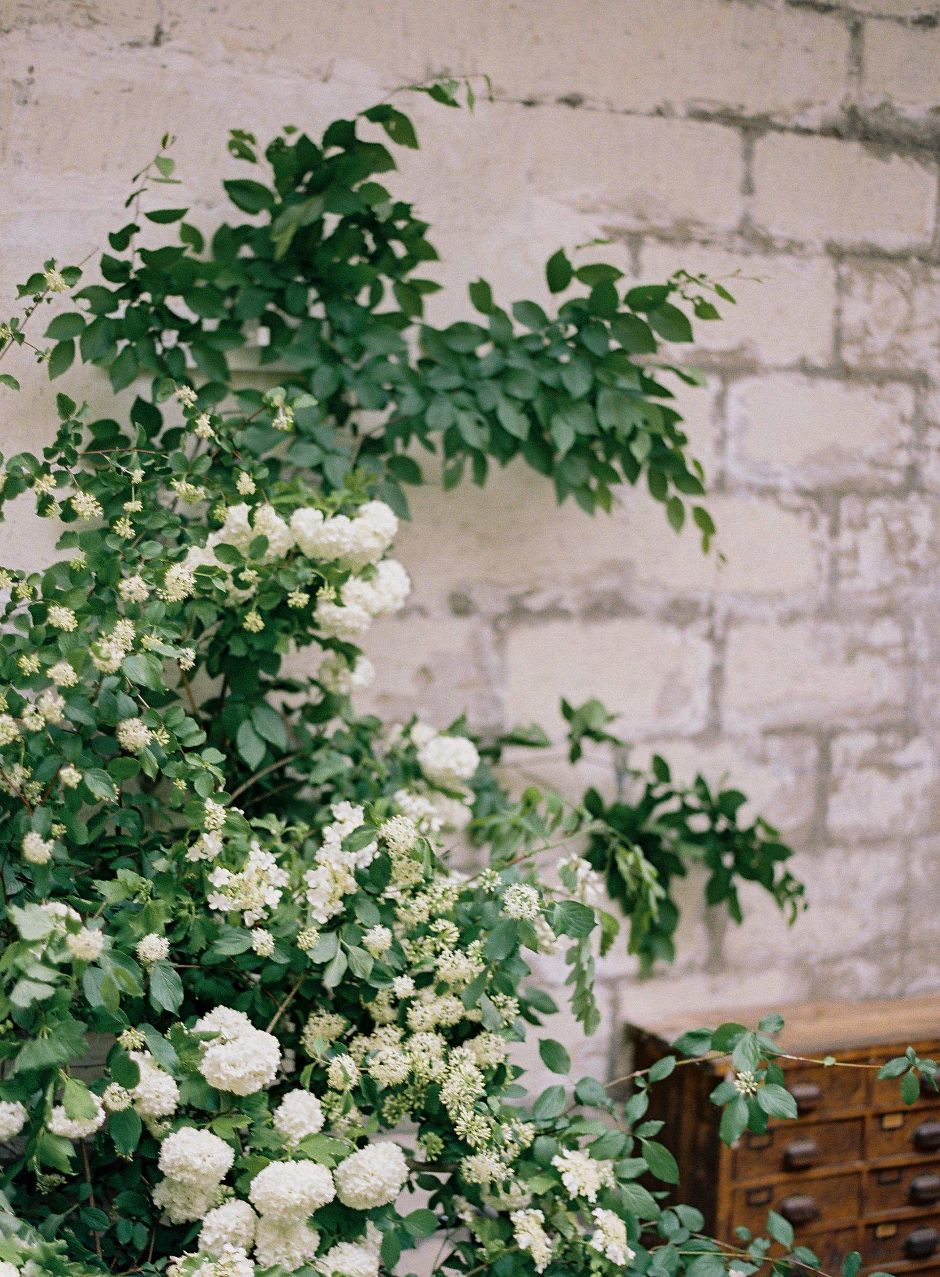 Floresie-Carrie King photographer-28.jpg