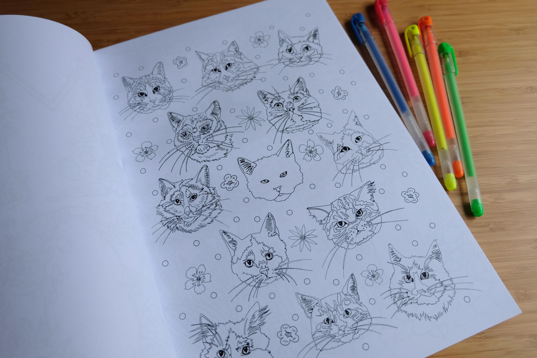 cats in wonderland 3.jpg