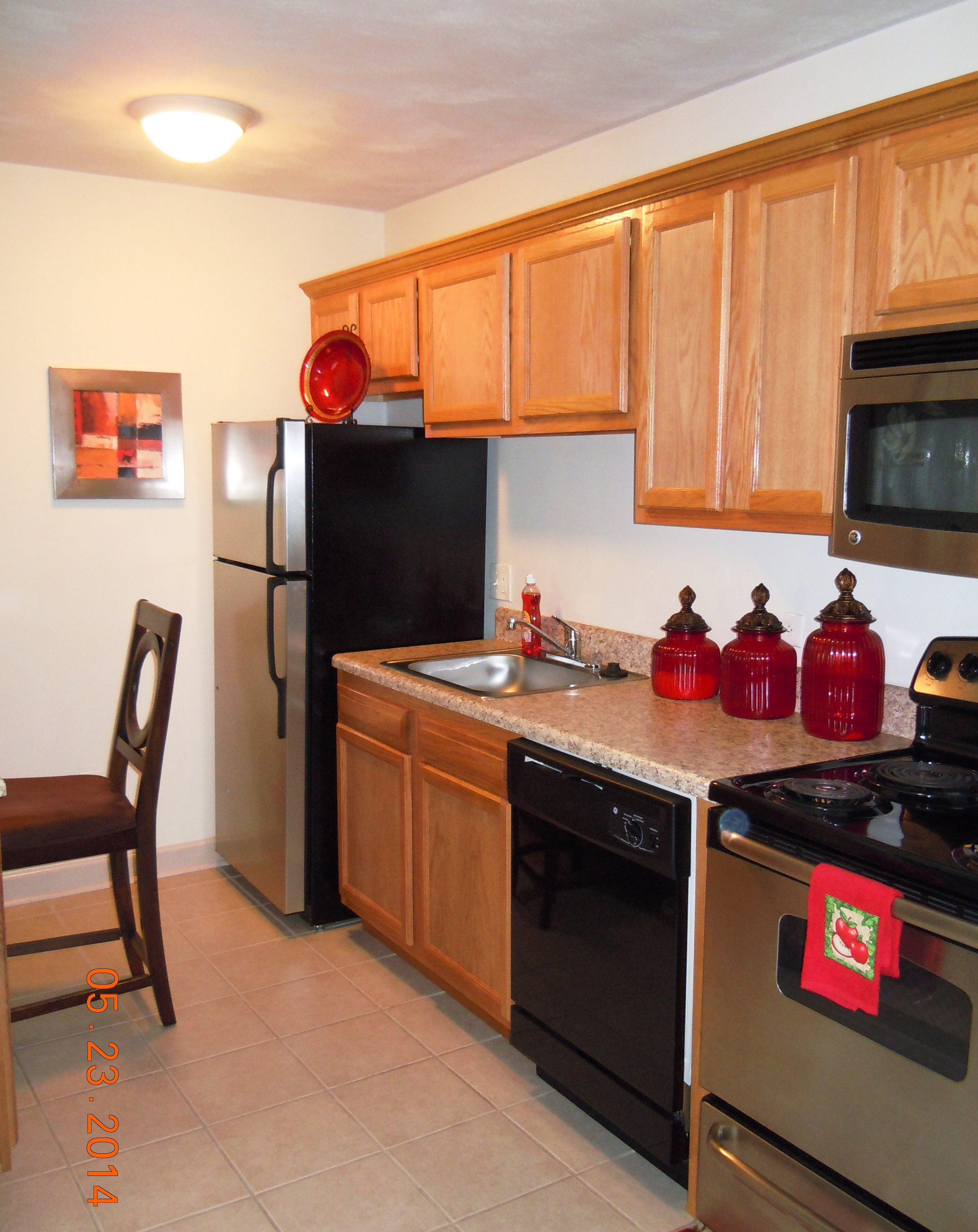 Apartment Guide Pictures (Dodi) 005.jpg