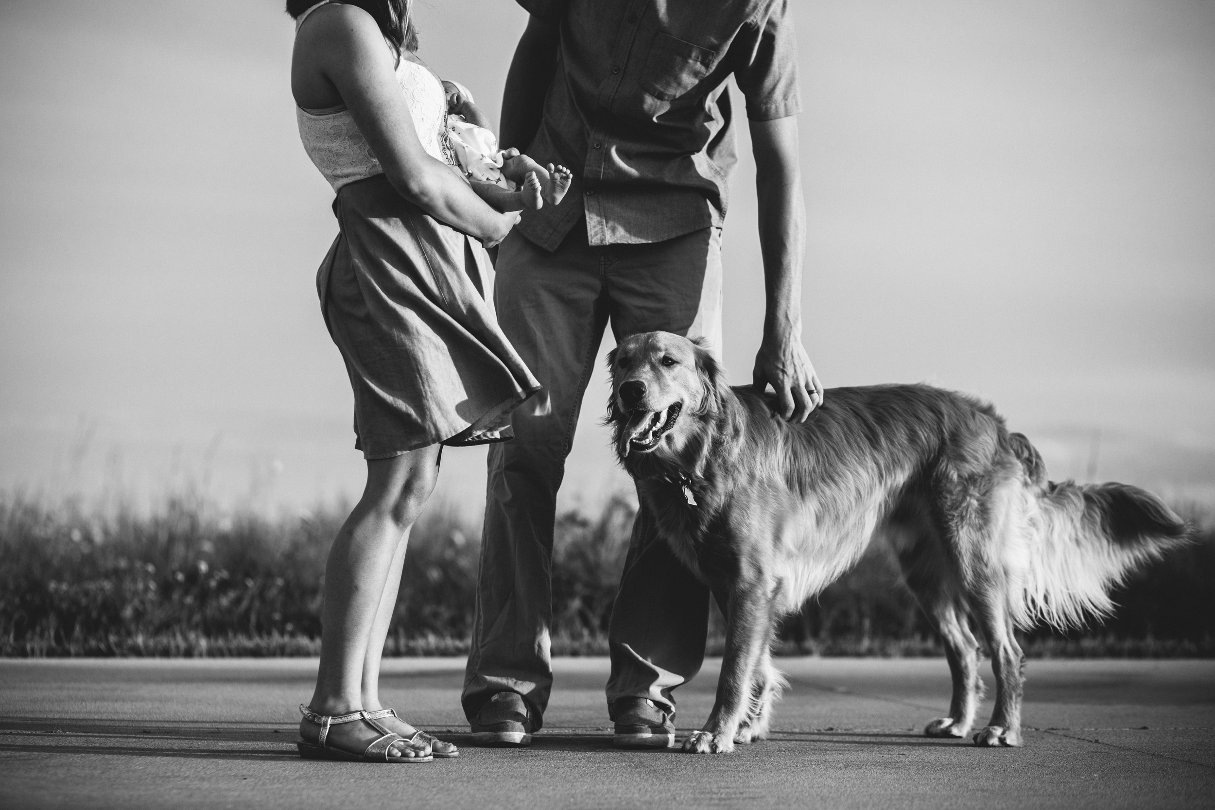 image of mother and father with newborn baby and dog