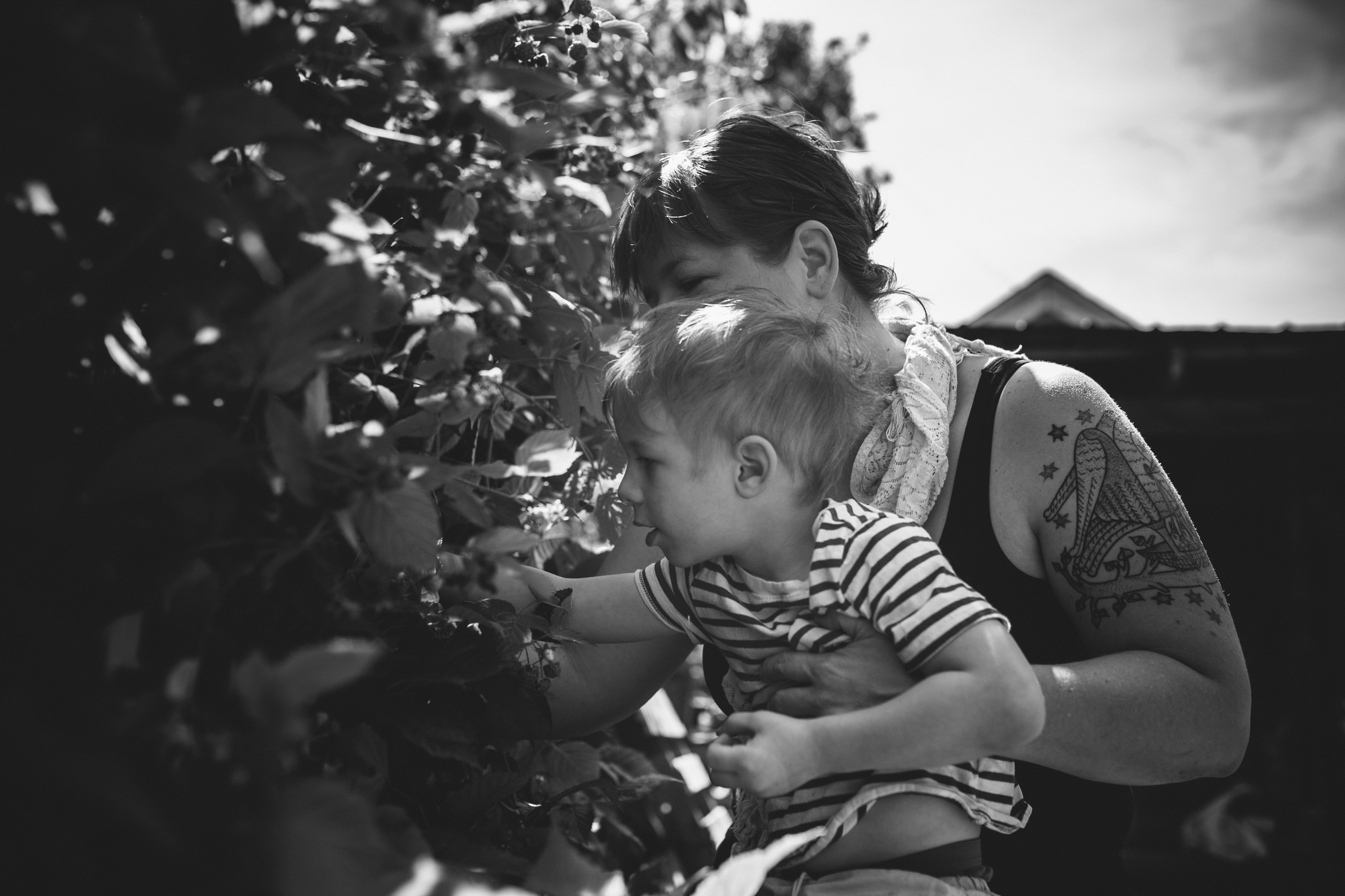 image from family documentary session of mother holding son while picking raspberries