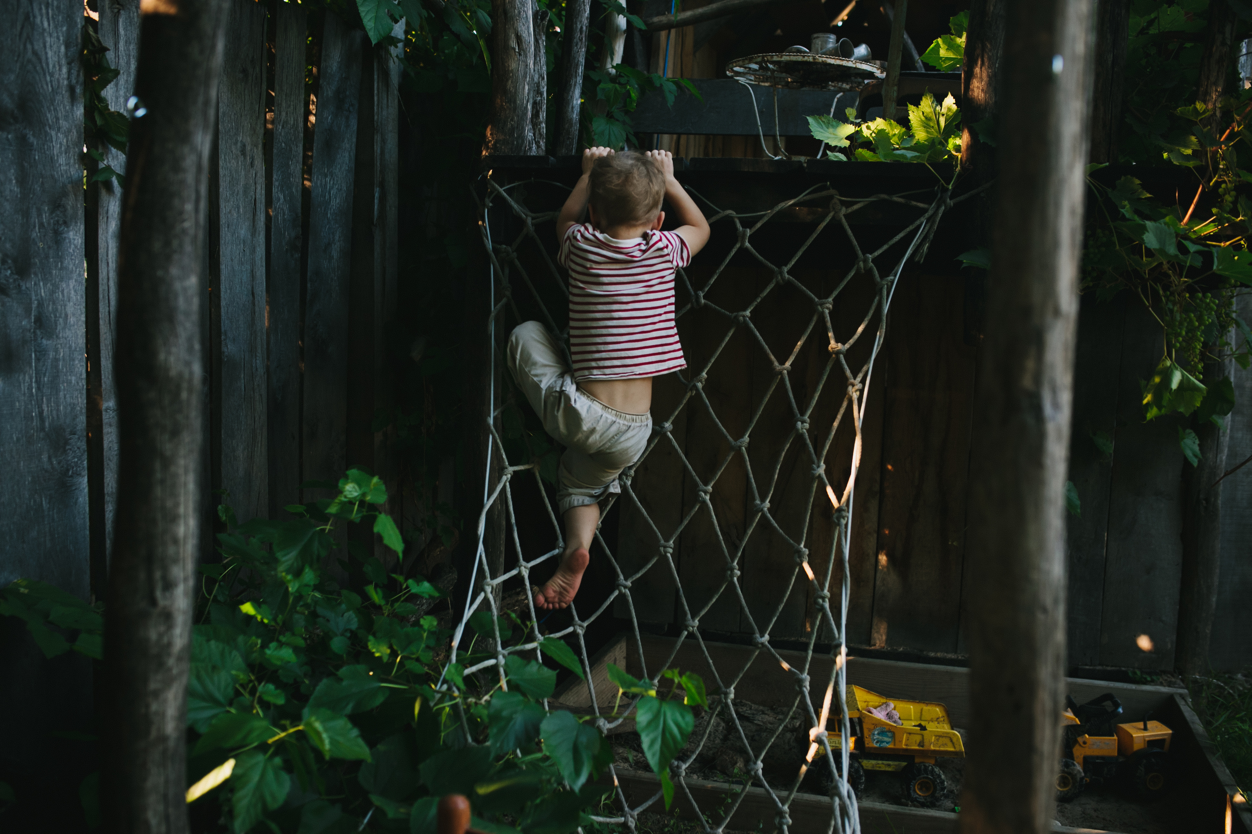 image from family documentary session of boy climbing a rope net