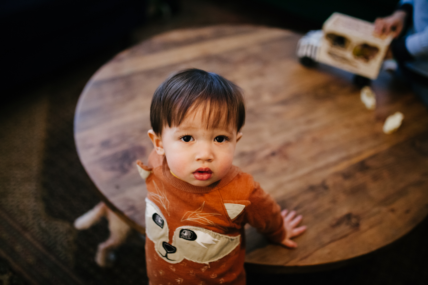 Portrait of a little boy from a family documentary photography session in atlanta
