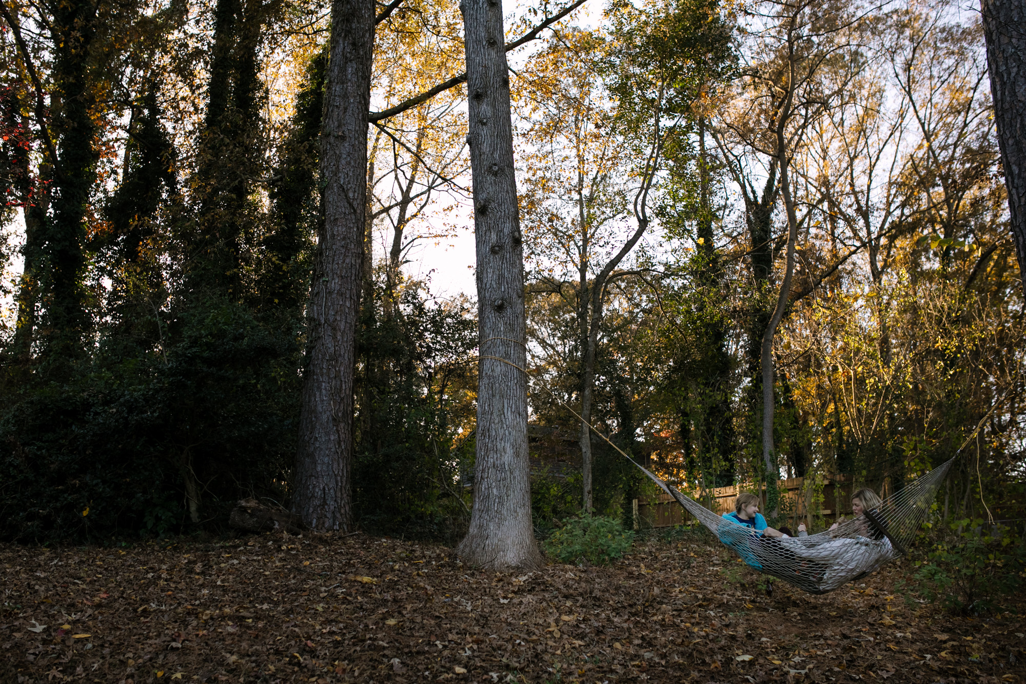 A family on a hammock with big trees