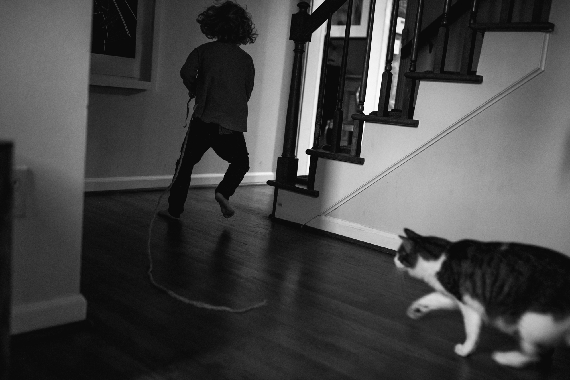 A cat chases a boy dragging a string around a corner