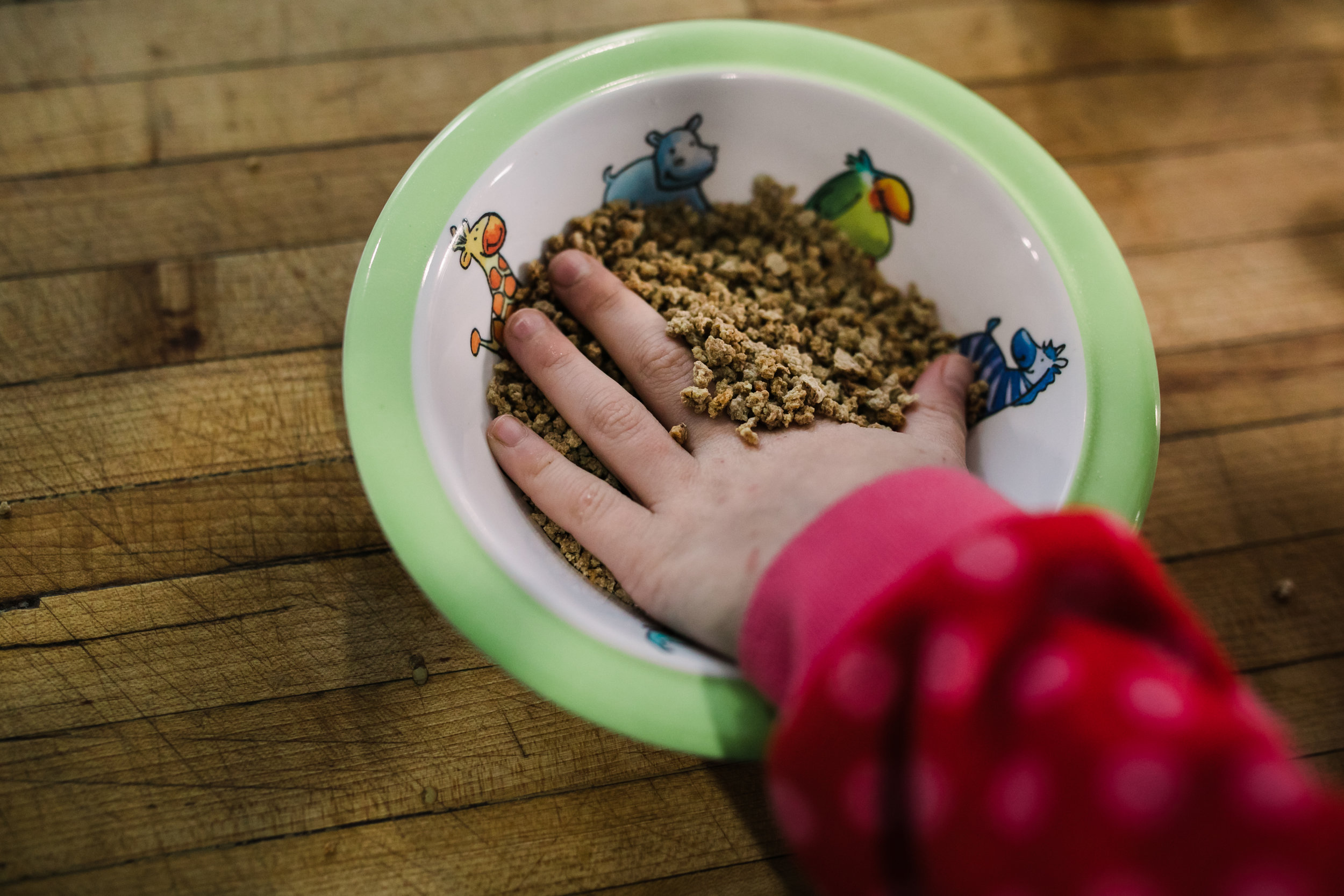 Child puts hand into a plastic bowl of Grapenuts