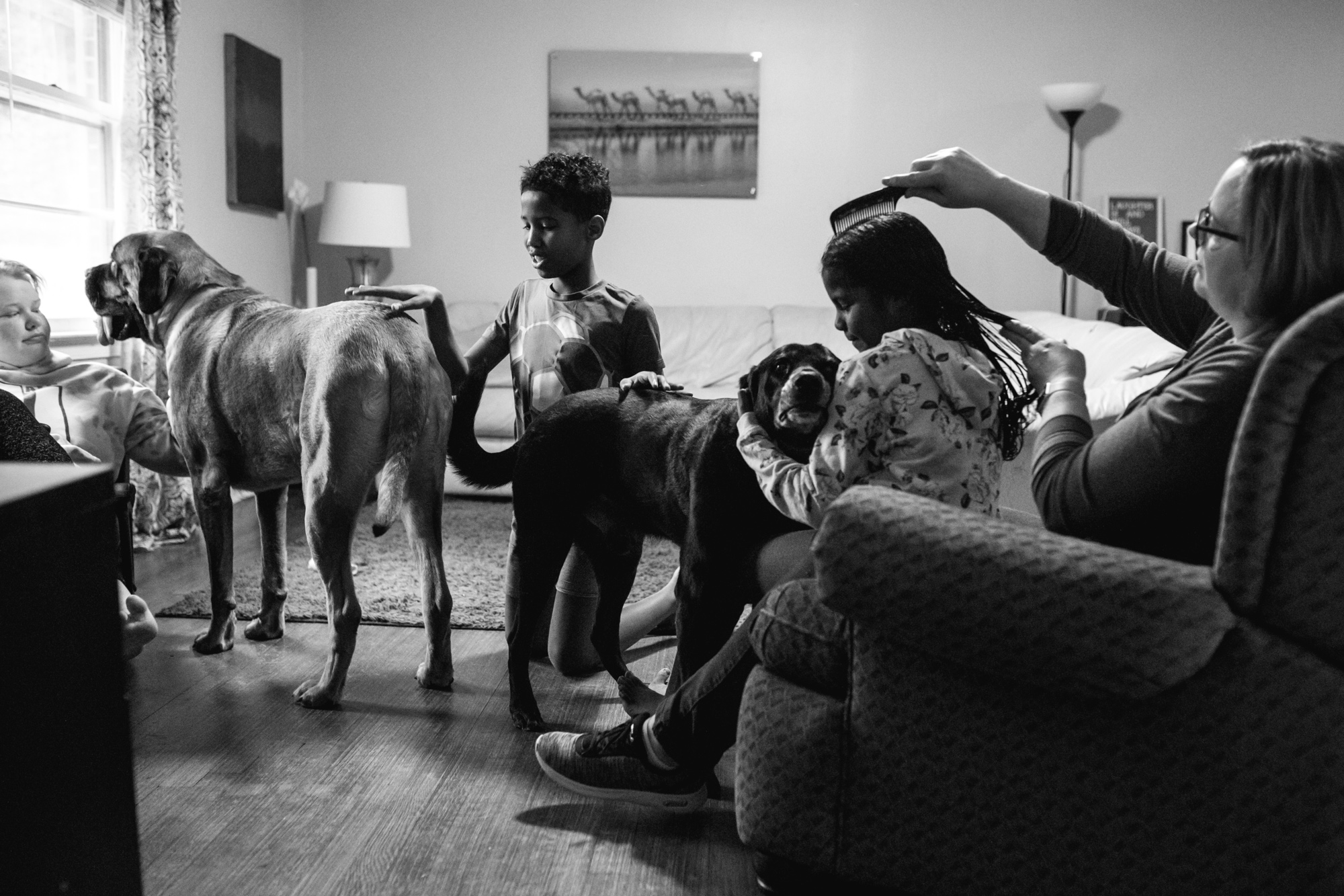 A mom brushes her daughter's hair as she cuddles a dog who is being pet by her brother who is petting another dog who is also being pet by a different sister