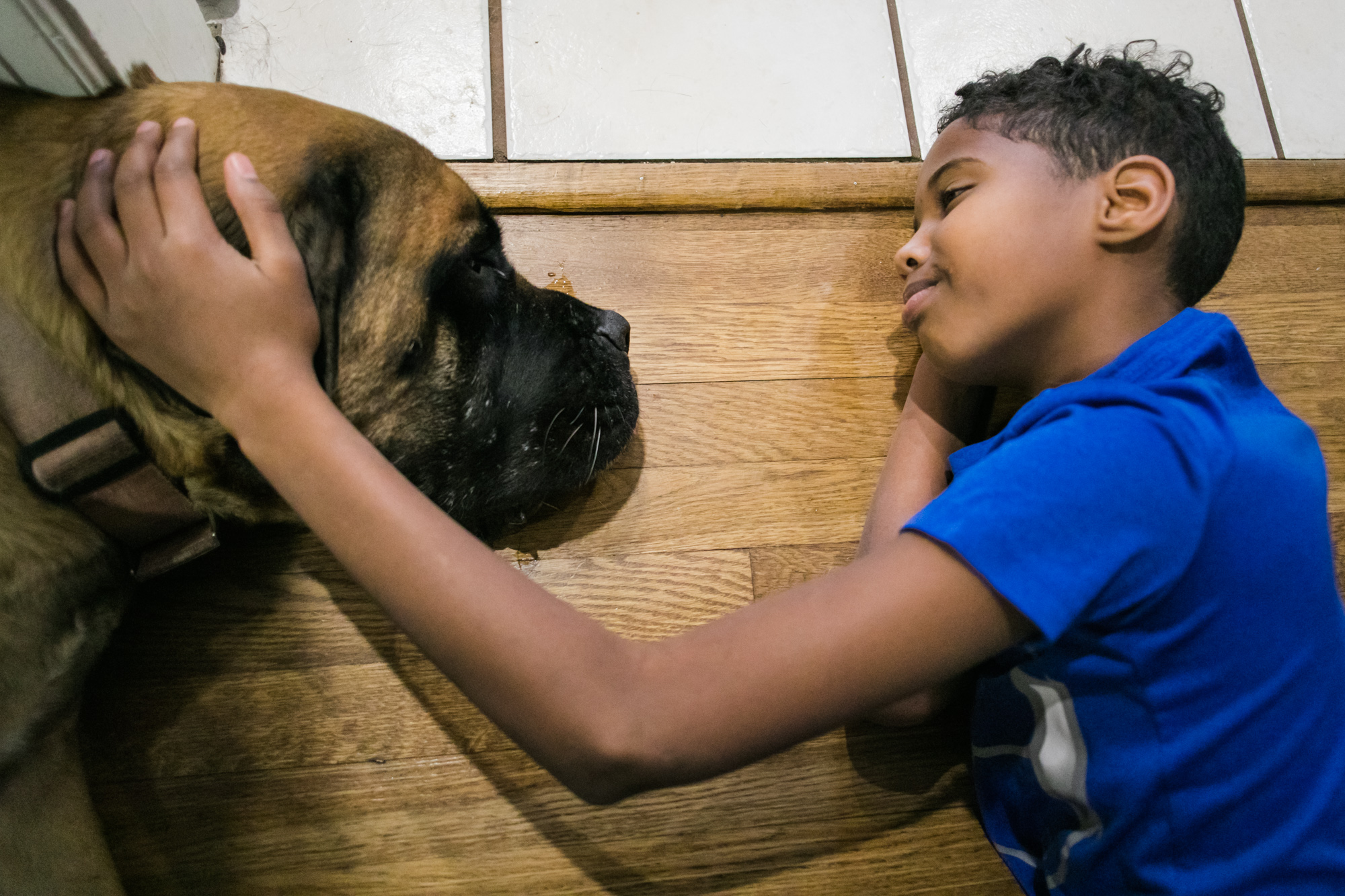 A boy puts his hand on a dog's head as they both lie on the ground facing each other