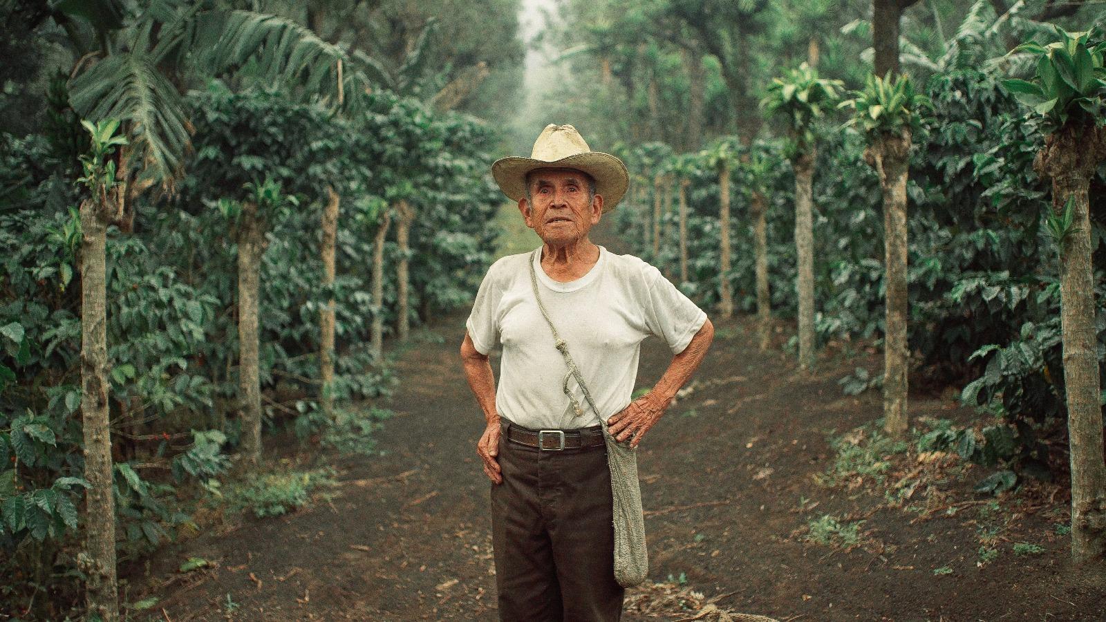 Don Luis Sajar Umul