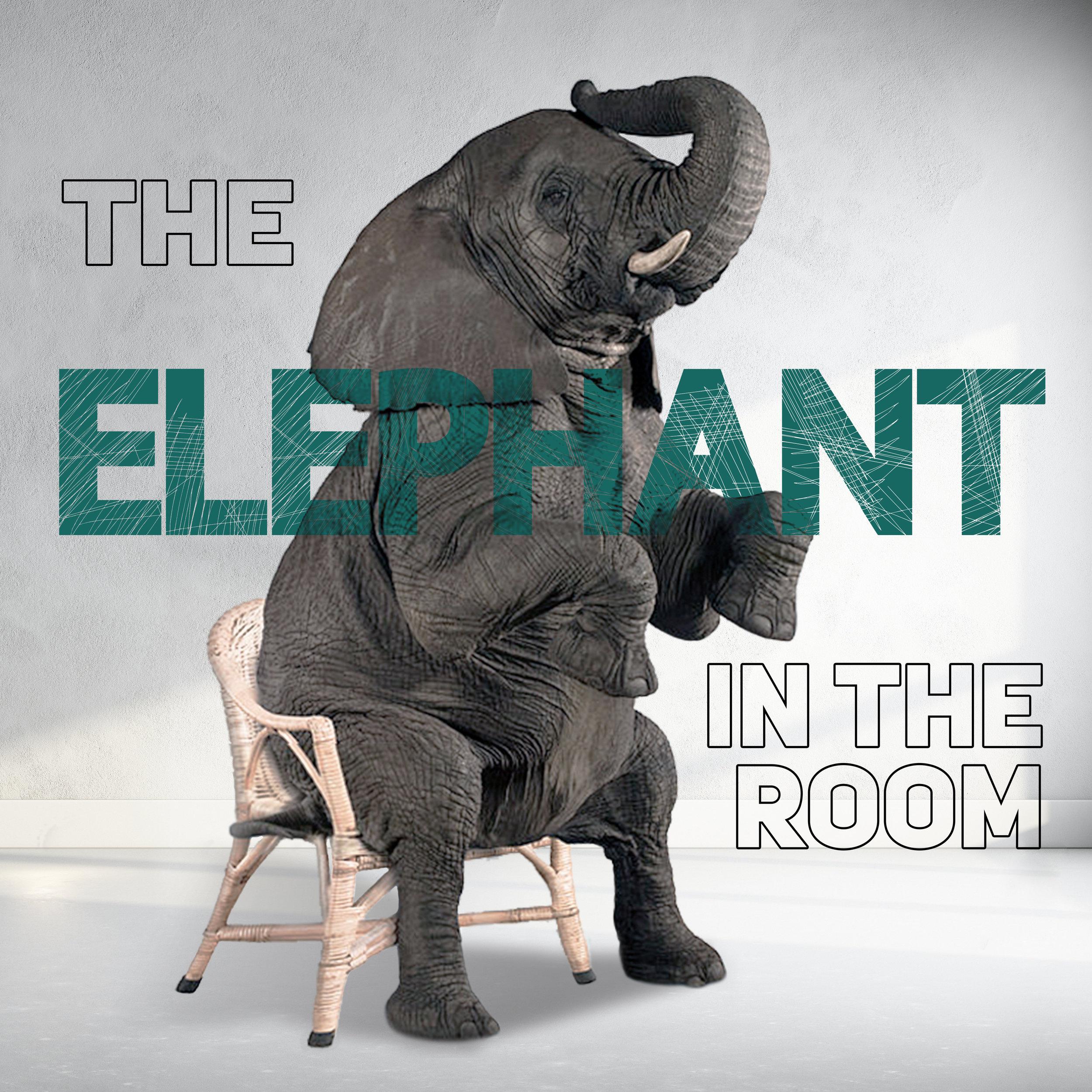 Elephant_Main_IG_2.jpg
