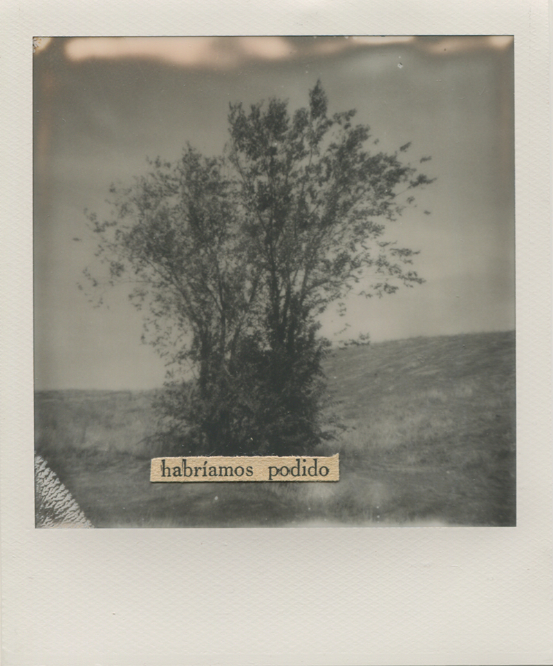 Polaroid 3 -Natalia Romay.jpg
