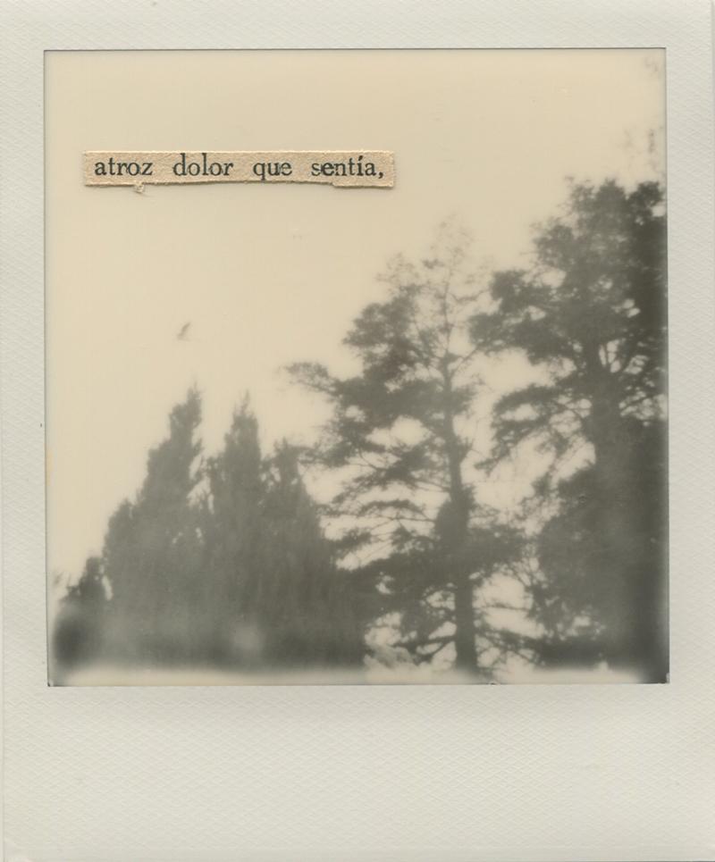 Polaroid 6 -Natalia Romay.jpg