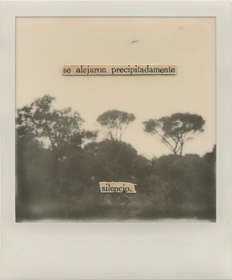 Polaroid 9 - Natalia Romay.jpg