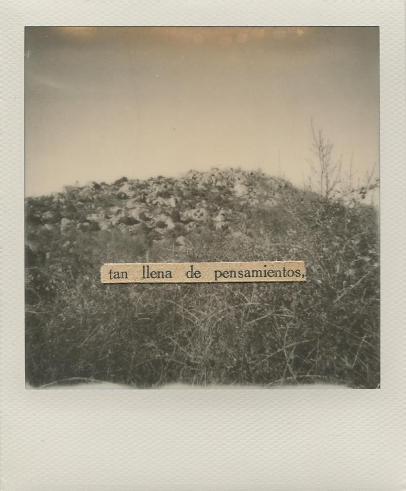 Polaroid 19 - Natalia Romay.jpg
