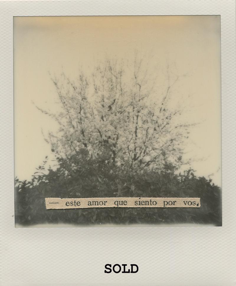 Polaroid 1 - NataliaRomaySOLD.jpg