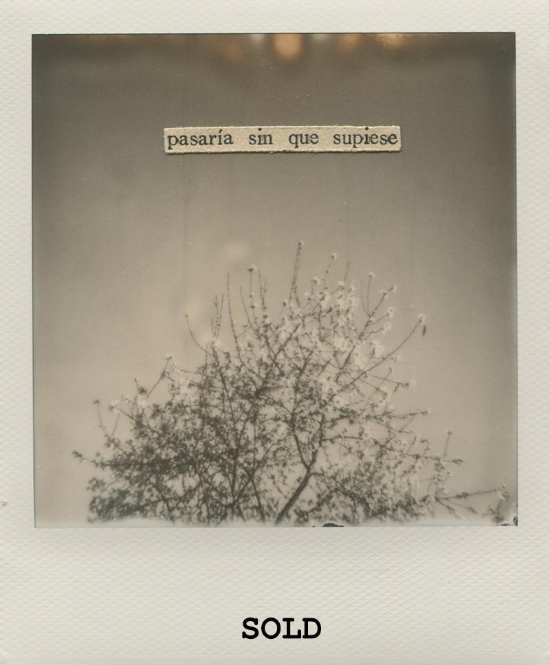 Polaroid 2 - NataliaRomaySOLD.jpg