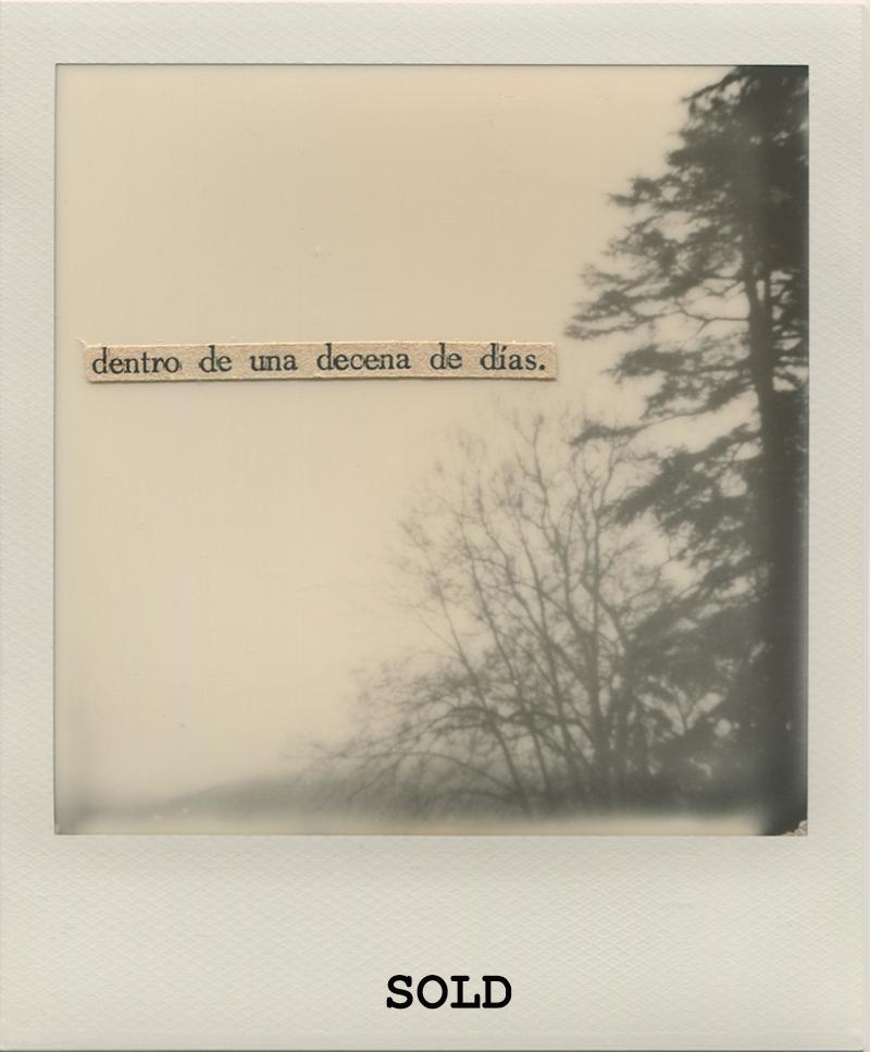 Polaroid 7 - Natalia RomaySOLD.jpg