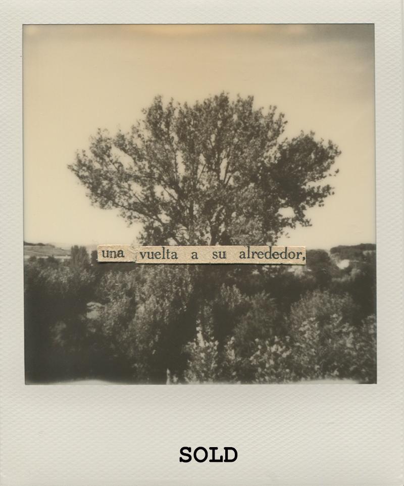 Polaroid 15 - Natalia RomaySOLD.jpg