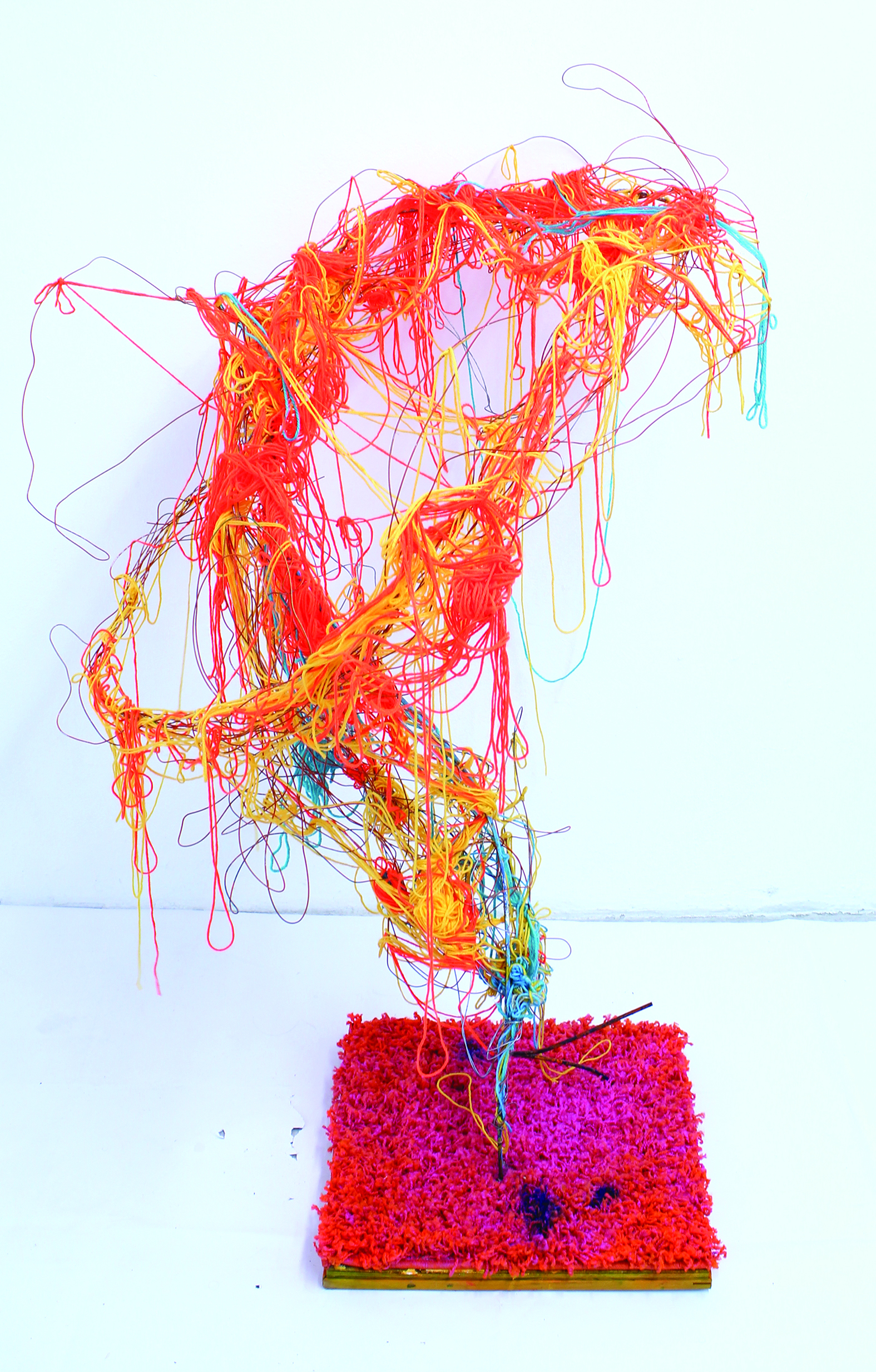 """From The Ground Up  (2014)  Wire, wood, rug, yarn, metal and spray paint   48"""" x 36""""x 36"""""""