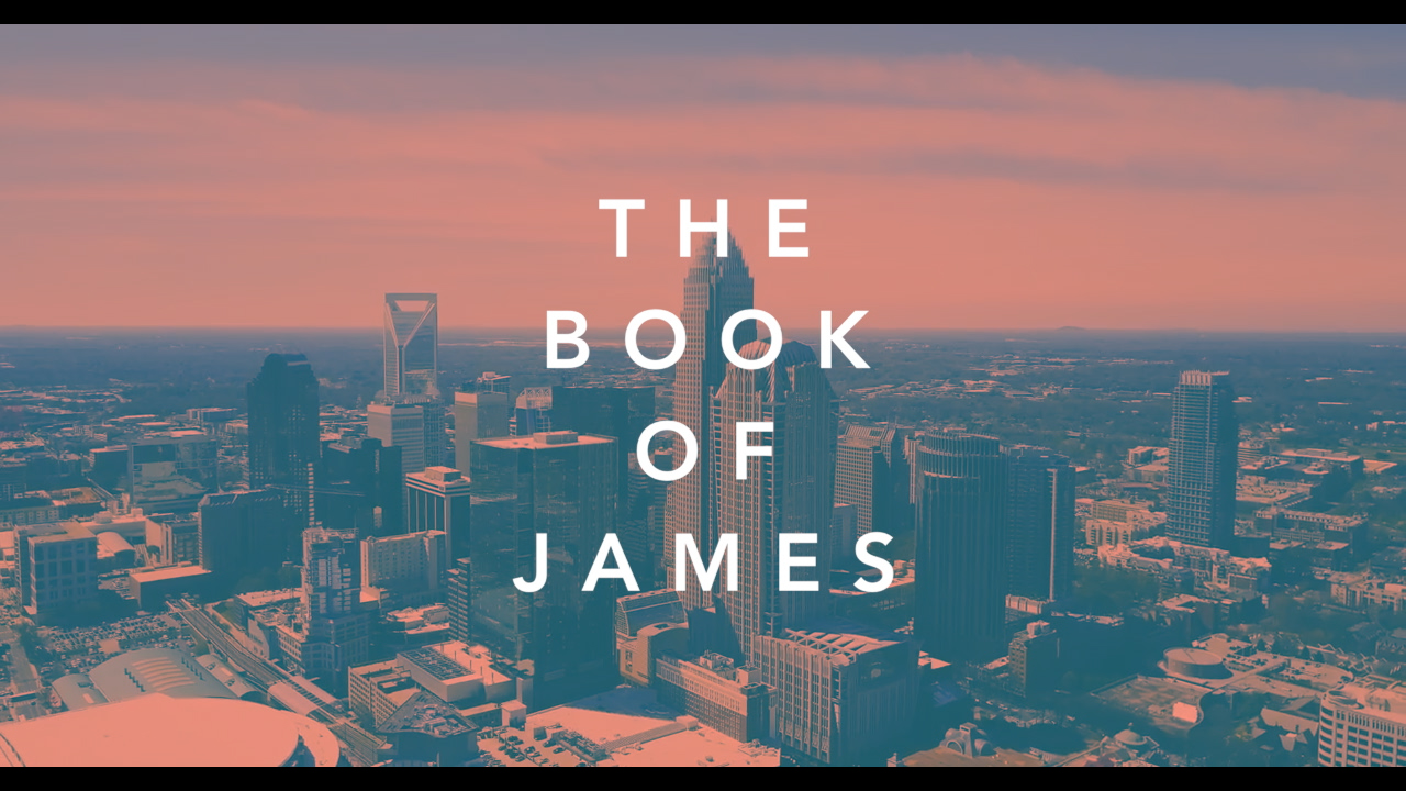 The Book of James  - Series Graphic.jpg
