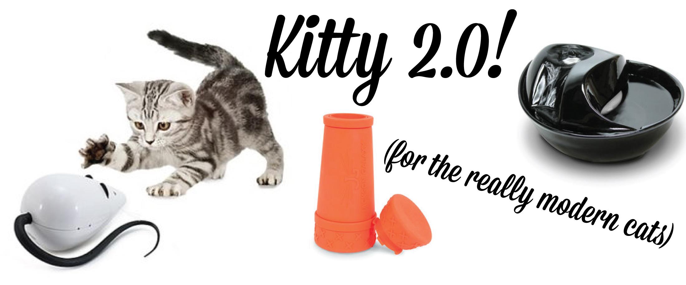 kittyTechShop.jpg