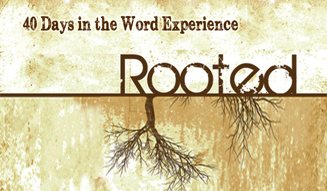 Rooted-Front.jpg